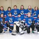 Blue Team 2013-2014